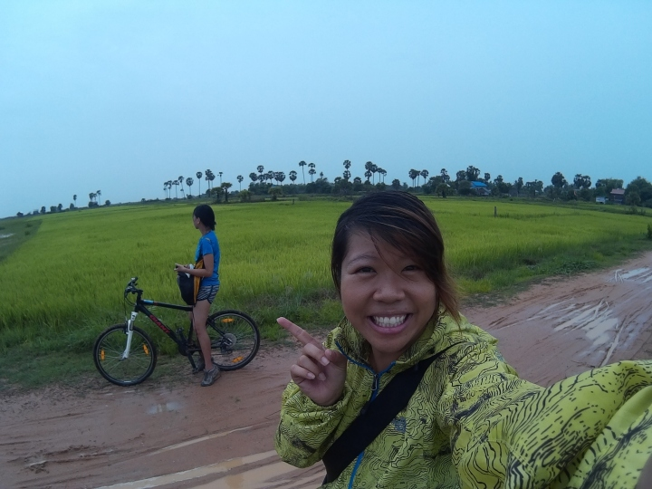 Cycling into rice fields.